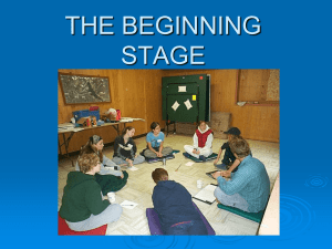 THE BEGINNING STAGE
