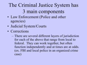 The Criminal Justice System notes