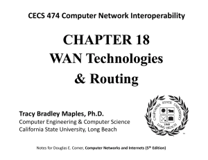 Chapter 18 -- WAN Routing - California State University, Long Beach