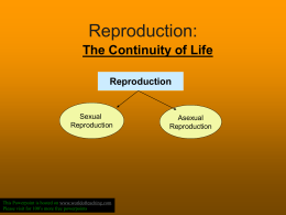 Sexual Reproduction continuity of life