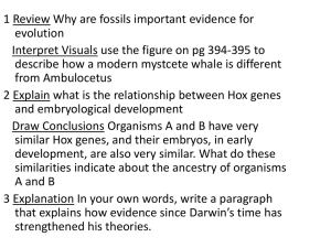 Ch 16 Darwin*s Theory of Evolution