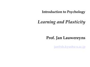 10 Learning and Plasticity