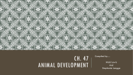 Ch. 47 Animal Development