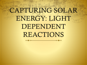 CAPTURING SOLAR ENERGY: LIGHT DEPENDENT REACTIONS