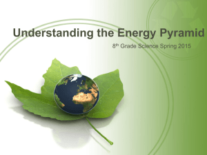 Energy Pyramid Lecture