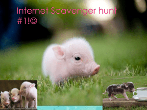 Internet Scavenger hunt #1!