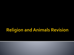 Religion and Animals