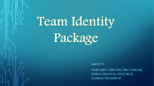 Team Identity Package