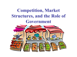 Competition, Market Structures, and the Role of Government