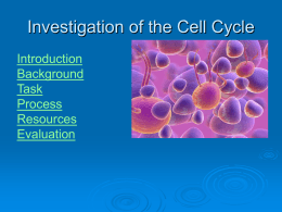 mitosis in cancerous cells essay Read this essay on mitosis in lab come browse our large digital warehouse of free sample essays  cytokinesis is running one cell into two cells mitosis is a .
