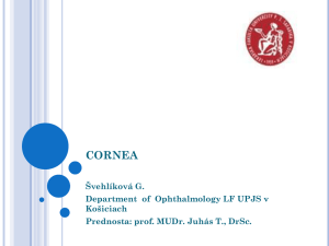 The cornea - TOP Recommended Websites