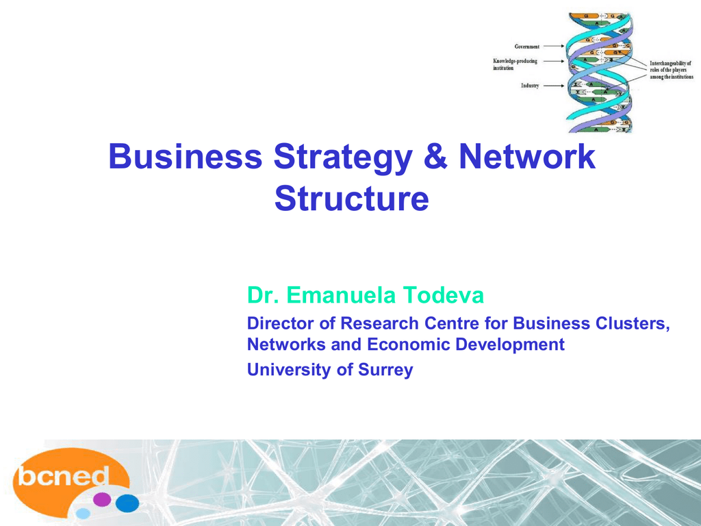 Business Networks: Strategy and Structure