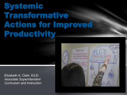 Systemic Transformative Actions for Improved Productivity