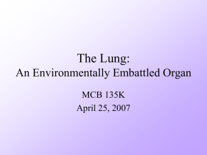 The Lung: An Environmentally Embattled Organ