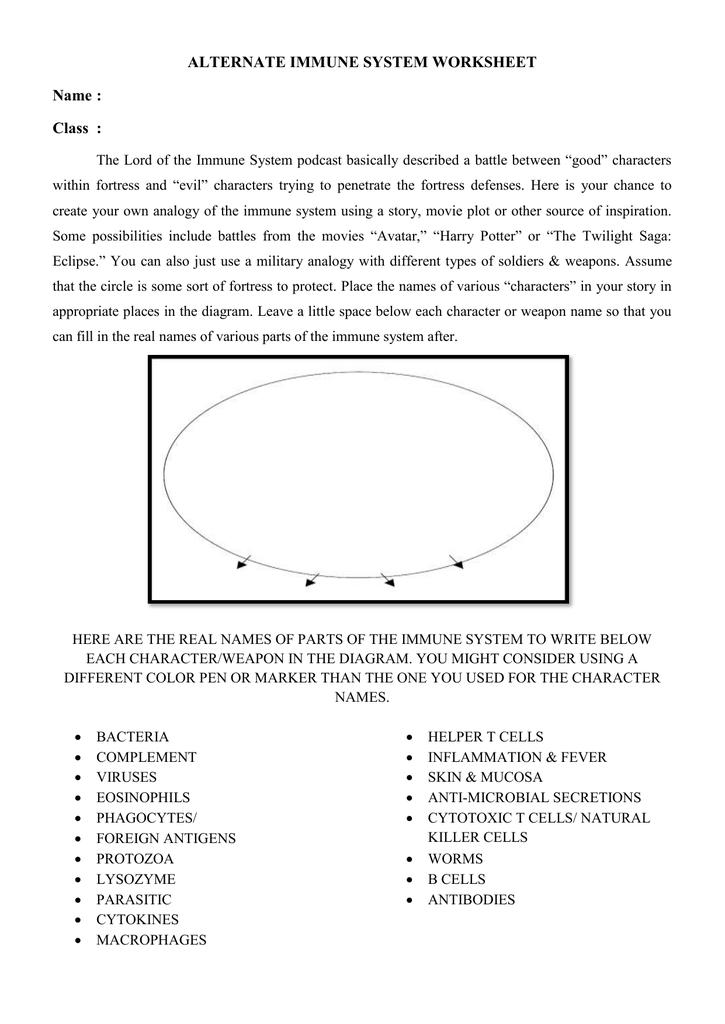 Analogy Immune System Worksheet