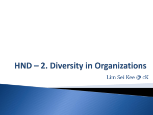 HND * 2. Diversity in Organizations