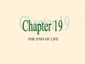 Chapter 19 PowerPoint