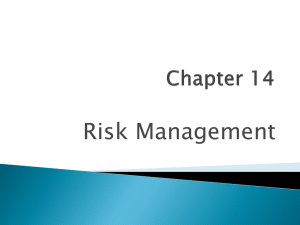 Chapter 14 Risk Management