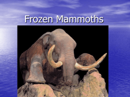 Frozen Mammoths - Wesley Grove Chapel