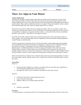 There are algae in your house Activity