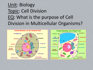 Unit: Biology Topic: Cell Division EQ: What is the purpose of Cell