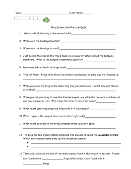 frog dissection pre lab worksheet the large and most comprehensive worksheets. Black Bedroom Furniture Sets. Home Design Ideas