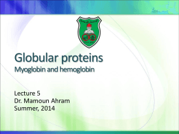 Fibrous and globular proteins Structure