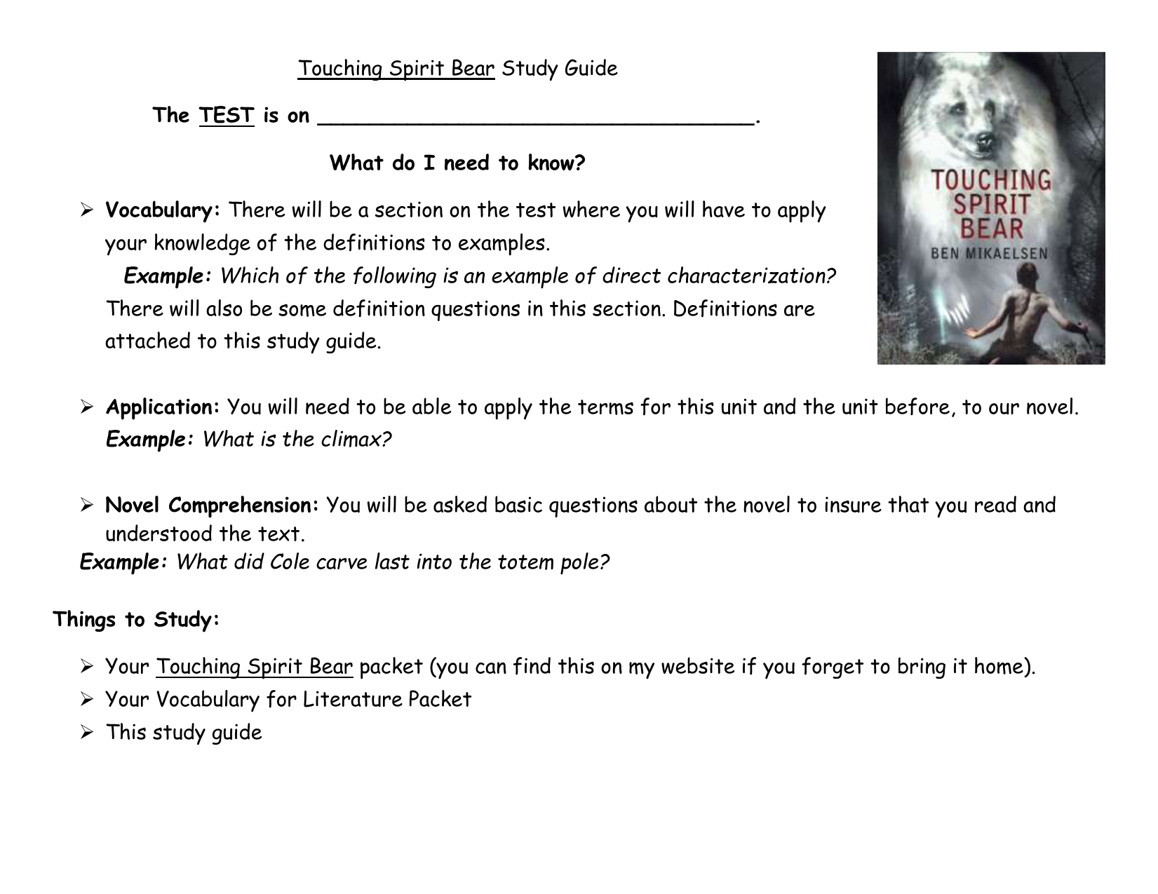touching spirit bear discussion questions