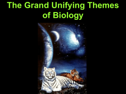 The Grand Unifying Themes of Biology