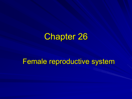 Chapter 26 - Reproductive