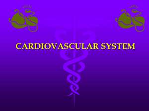 CHAPTER 18: CARDIOVASCULAR SYSTEM