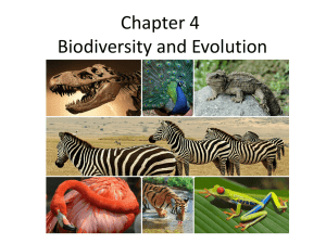 Chapter 4 Biodiversity and Evolution