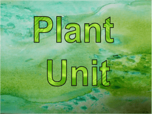 File plant powerpoint_all standards