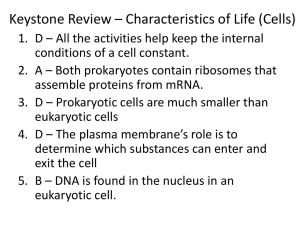 Keystone Review * Characteristics of Life (Cells)