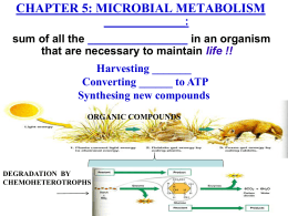 Microbiology Microbial Metabolism II Catabolism  amp  Anabolism studylib net
