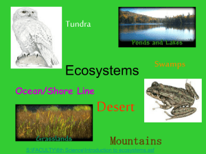 Ecosystem: All of the living and non-living things that interact in an