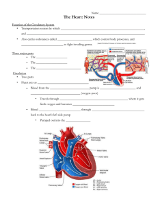 Heart Lecture Student Notes