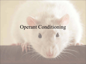 Operant versus classical conditioning: Law of Effect