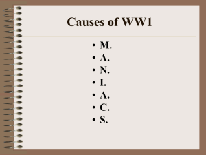 Causes of WWI 2014 - Solon City Schools