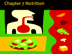 Chapter 7 Nutrition ppt 277