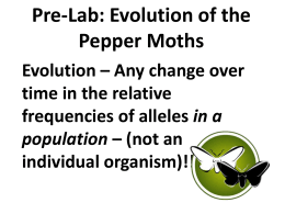 peppered moth lab report Predators of the peppered moth are flycatchers, nuthatches and the european   as we can observe from this lab report natural selection is a.