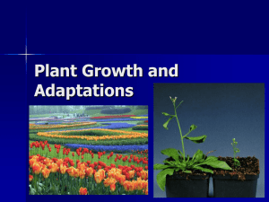 Plant Growth and Adaptations