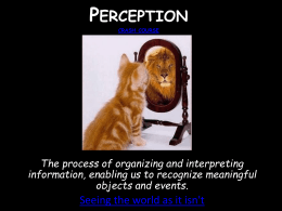 Perception - Cobb Learning