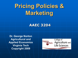 Pricing Policies and Marketing Systems