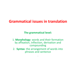 Grammatical issues in translation The grammatical level