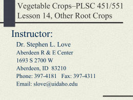 Veg Crops-Lesson 14 Other root