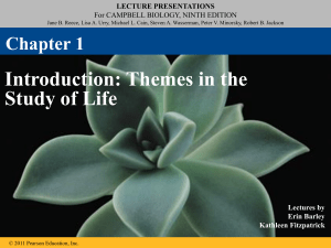 lecture presentations