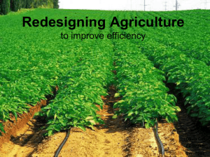 Redesigning Agriculture to improve efficiency