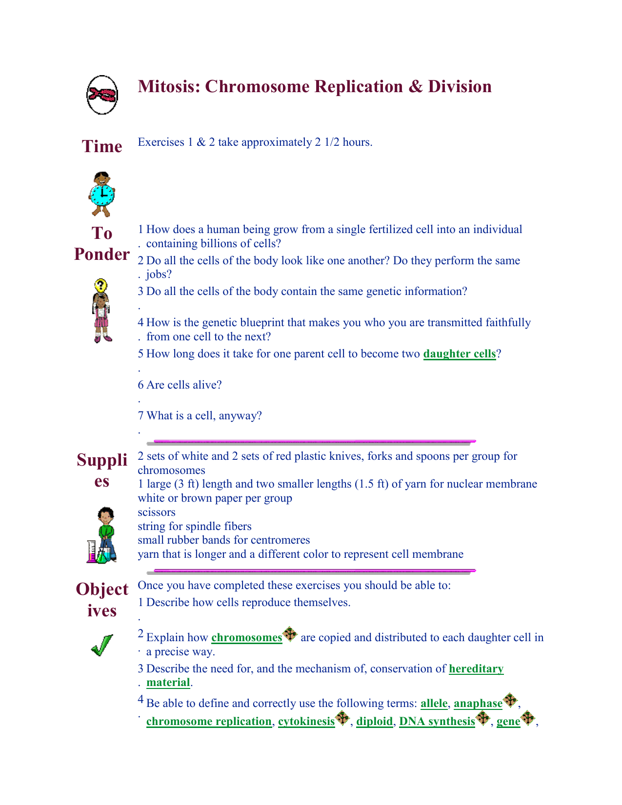 Cells alive mitosis phase worksheet answer key
