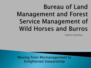 Bureau of Land Management and Forest Service Management of